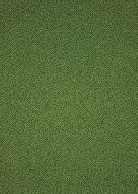 緑色の鮫小紋模様・和柄、A4サイズ背景素材