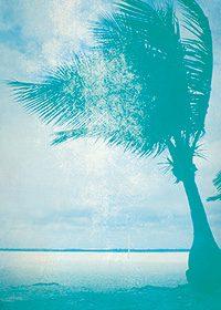 ヴィンテージ感のある、ヤシの木と海のA4サイズ背景素材