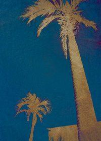 ブルーバックのヤシの木のA4サイズ背景素材