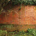 草木に覆われたレンガのA4サイズ背景素材