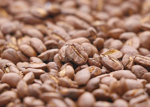 真ん中で存在感を出すコーヒ豆のA4サイズ背景素材