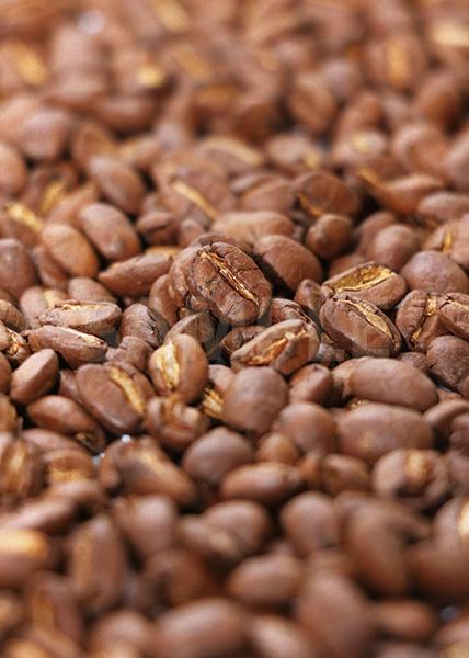 真ん中で主張するコーヒ豆のA4サイズ背景素材