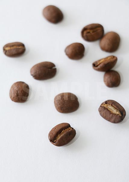 コーヒ豆が散らばるA4サイズ背景素材