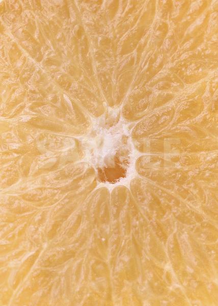 グレープフルーツの断面アップのA4サイズ背景素材
