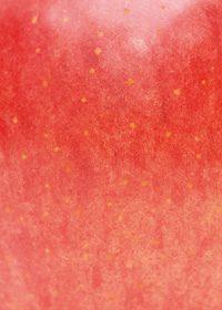りんごの表面のA4サイズ背景素材