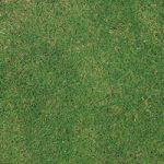 緑の芝生のA4サイズ背景素材