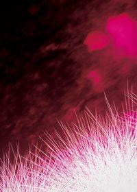 真っ赤な花火のA4サイズ背景素材データ