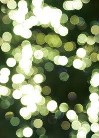 緑色のぼやけた光のA4サイズ背景素材